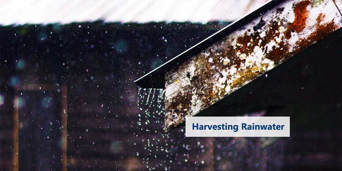 Rainwater Harvesting:  Corrugated Zincalume Tank